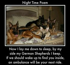 I don't own a German Shepherd, but this one is too funny not to pin.