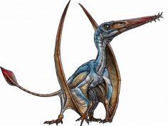 Allkaruen koi newly discovered pterosaur species in Argentina