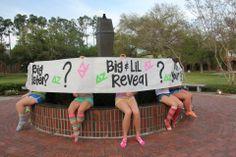 Kappa Alpha Big Little Reveal Spring 2012 :) Gamma Sigma Sigma, Tri Delta, Alpha Sigma Alpha, Kappa Delta, Theta, Big Sister Little Sister, Big Little Reveal, Big Little Gifts, Sorority Life