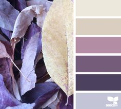 COLOURS: Dirty, wintery hues More