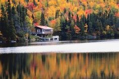 I adore fall travel: Cooler temperatures, colorful foliage, favorite sweaters & long drives to soak in the panoramic views. Here's a few favorite spots. Oklahoma Cabins, State Park Cabins, Summer Cabins, Forest Cabin, Vintage Cabin, Winter Cabin, Survival Life, Survival Skills, Lake Cabins