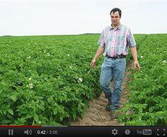 Découvrez le portrait vidéo de Benoît, producteur de la pomme de terre Pompadour Label Rouge