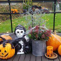 Har du halloween-pynt i dit drivhus? 🎃🏡 Det er så festligt, når man kan se det ude i haven 💚🎃💚🎃💚 Del endelig billeder - uanset om de er hyggelige eller uhyggelige med #julianahalloween 😈😊🌱 #mitjuliana #drivhusliv #drivhusglæder #haven #julianadrivhuse #julianadrivhus #drivhus #mitdrivhus #efteråridrivhuset #halloweenidrivhuset Halloween, Wreaths, Inspiration, Instagram, Ideas, Home Decor, Biblical Inspiration, Decoration Home, Door Wreaths