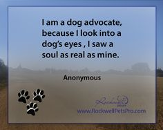 I am a dog advocate, because I look into a dog's eyes, I saw a soul as real as mine. www.rockwellpetspro.com. #Dog
