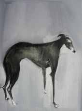 Sally Muir, Hound Oil on board 8x10