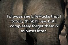 Shower Thoughts – 20 Funny Pictures