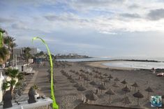 Playa de Las Americas is one of the best known places on the sunny island of Tenerife. Gather here with your friends or family for a day of fun and relaxation. Let's arrange a trip