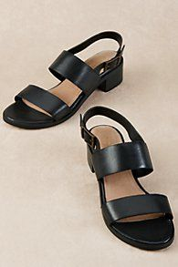 Seychelles Gallivant Sandals