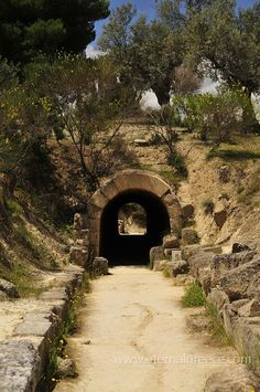 Entrance tunnel to the ancient stadium. Famed for its association with the First Labour of Hercules, its heady red wine, its serene natural beauty and the magnificent archaeological site, museum and ancient stadium, Nemea is a must-visit destination!  For more information, please visit www.eternalgreece.com/ancient-nemea/  #ancientnemea #Greece #Peloponnese #travel #holiday #holidays #vacation #vacations #archaeology #mythology