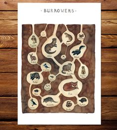 Burrowing Animals Field Guide Art Print by Kate Dolamore Art on Scoutmob Shoppe - http://scoutmob.com/p/Burrowing-Animals-Field-Guide-Art-Print-dolamore