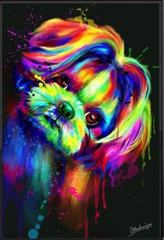 Perro Shih Tzu, Shih Tzu Dog, Shih Tzus, Abstract Portrait, Abstract Drawings, Jesus Drawings, Rainbow Dog, Puppy Drawing, Yorkie Dogs