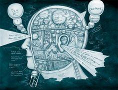 brain5.jpg (800×613)