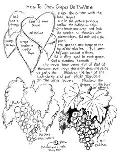 How to Draw Worksheets for The Young Artist: How to Draw Grapes on the Vine Worksheet (Bottle Sketch Pencil Drawings) Drawing Lessons, Drawing Techniques, Art Lessons, Drawing Tips, Doodle Drawings, Drawing Sketches, Sketching, Pencil Drawings, Plant Drawing