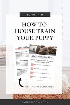 3 Reasons Why You Need To Try… #dogtrainingcourse Leash Training, Agility Training, Puppy Training Tips, Crate Training, Dog Agility, Training Your Dog, Puppy House, Puppy Biting, Puppies Tips