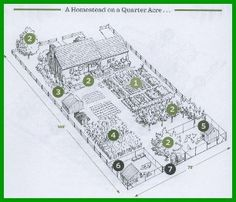 Homestead on a Quarter Acre... backyard homestead plan.. this site is awesome