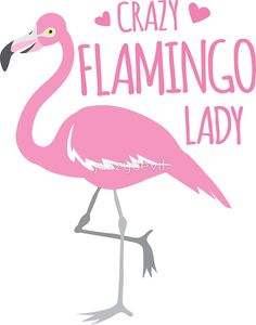 'Crazy Flamingo lady' Sticker by jazzydevil Flamingo Decor, Pink Flamingos, Toddler Coloring Book, Flamingo Pattern, Pink Bird, Happy Animals, Stained Glass Patterns, My Spirit Animal, Hanging Wall Art