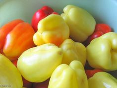 Stuffed Peppers OR Punjene paprike – Blackberries and I