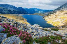 Lacul Bucura, #Romania, #Hunedoara #LaculBucura #MuntiiRetezat #DescoperaRomania #Vacanta #Excursii #ObiectiveTuristice #Travel #ShiftTour http://shift-tour.ro/descopera-romania/1085-lacul-bucura