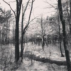 Bob Workman @Robert Workman Instagram photos | Webstagram