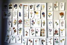 Panel de abejas.