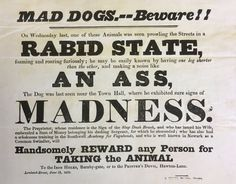 Insults and songs were at the heart of Victorian election campaigns, archive documents reveal. Weird World, Satire, England, Victorian, Songs, English, Song Books, British, United Kingdom