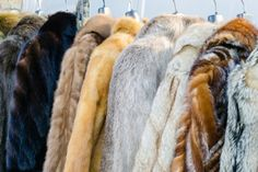 To protect your expensive fur coat, make sure you only clean it by using one of these approved methods.