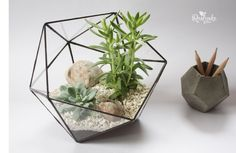 Geometric Terrarium / Icosahedron / Stained Glass Terrarium / Handmade Glass Planter / Stained glass vase by Roslynka on Etsy https://www.etsy.com/listing/265941816/geometric-terrarium-icosahedron-stained