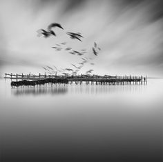 Dreamy Black And White Photography_4 #BRABBU approves ;) | http://www.brabbu.com/
