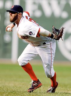 Dustin Pedroia Boston Red Sox baseball