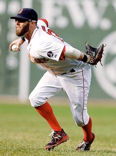 Dustin Pedroia Boston Red Sox baseball