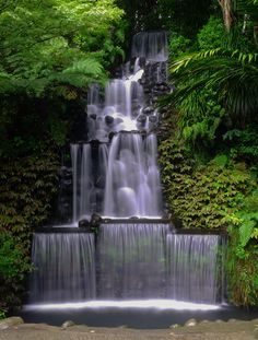 Pukekura Park Waterfall, New Plymouth, New Zealand