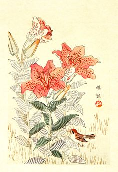 Japanese flowers and birds botanical art prints, posters, paintings, woodblock prints. Sparrow, Tiger Lilies, Kono Bairei FINE ART PRINT.