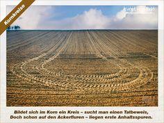 Kunst vom Feld: Kornkreise – www.kunstvomfeld.de
