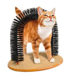 HOT Sale! 2017 New Arrival Arch Pet Cat Self Groomer With Round Fleece Base Cat Toy Brush Toys For Pets Scratching Devices ** You can get more details by clicking on the image. (This is an affiliate link and I receive a commission for the sales) #MyCat