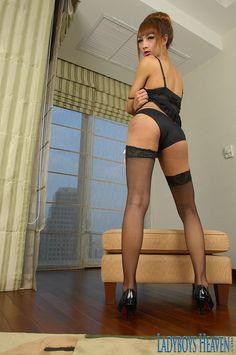 """Hot Thailand ladyboy """"Cartoon"""" in sexy stockings. #ladyboy #tgirls #shemale #tranny #kathoey"""
