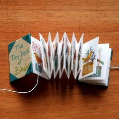 tiny book of birds