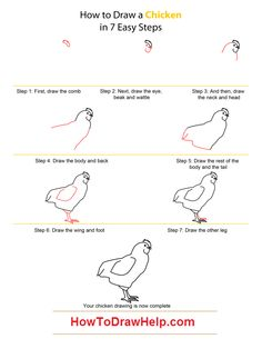 Step By Step instructions to draw a Chicken is mentioned below. Description from howtodrawhelp.com. I searched for this on bing.com/images