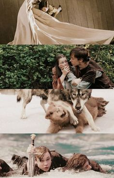 The Chronicles of Narnia: The Lion, the Witch and the Wardrobe << except that second picture is from Prince Caspian Narnia Movies, Narnia 3, Narnia Cast, Saga, Cair Paravel, Prince Caspian, Stunt Doubles, The Valiant, Chronicles Of Narnia