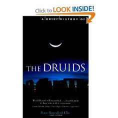 "a more accurate view of Druids, but mostly about recorded descriptions.  (By the way, the word ""Druid"" just means ""Expert"", not priest or any single function.  There were Druids of every subject.)"
