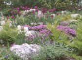 Best Connecticut State Parks to Visit in the Spring Harkness - Farrand designed garden Osbornedale - good activities for family