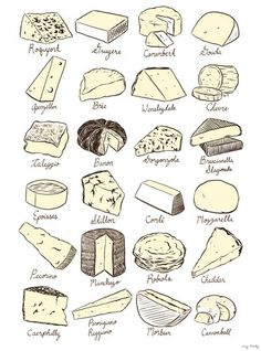 Beautiful line drawings of some of our favorite cheeses