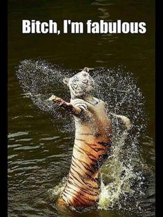 I'm fabulous! :D