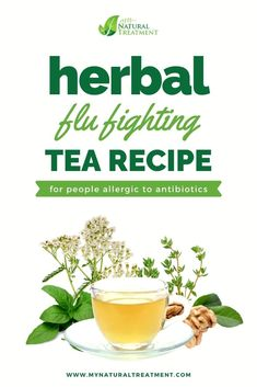 Strong Herbal Flu Fighting Tea Recipe for People Allergic to Antibiotics #flutea #fluherbs #herbaltea Natural Cold Remedies, Cold Home Remedies, Flu Remedies, Natural Antivirals, Tea For Flu, Flu Like Symptoms, Natural Antibiotics, Tea Recipes, Natural Treatments