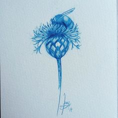And the answer is…. A bee on a centaurea ;))) Who wants to play again? :) #art #guesswhat #bee #centaurea #june #junel #juneleeloo #fb http://ift.tt/2rS2O7z