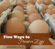 Five Ways to Preserve Eggs | PreparednessMama