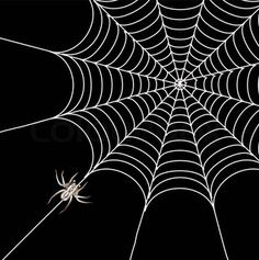 Vector of 'black spider and spider web isolated on the white . Web Background Image, Background Drawing, Spider Web Drawing, Spider Art, Spider Webs, Halloween Wallpaper Iphone, Halloween Backgrounds, Free Wallpaper Backgrounds, Black Backgrounds
