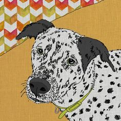 'Pringle' by Betsy Olmsted Graphic Art on Canvas