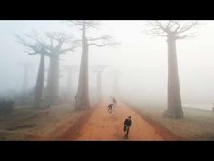 Skateboarding in Madagascar - Expect the Unexpected - Part 1 - YouTube