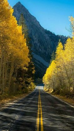 Image uploaded by shooting star. Find images and videos about nature on We Heart It - the app to get lost in what you love. Beautiful Roads, Beautiful Places To Visit, Beautiful Nature Wallpaper, Beautiful Landscapes, Landscape Photography, Nature Photography, On The Road Again, Autumn Scenery, Roadtrip