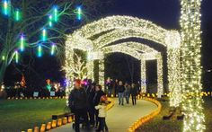 The Wichita area will be brimming with holiday happenings from mid-November through the end of December. To give you a chance to plan, here are many of the events, concerts, stage performances and lighting displays scheduled in November and December.